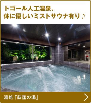 トゴール人工温泉、身体に優しいミストサウナ有り♪